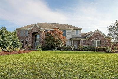Plymouth Single Family Home For Sale: 51175 Plymouth Lake Court
