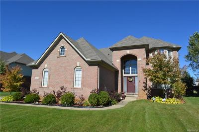 White Lake Single Family Home For Sale: 8200 Filmore Court