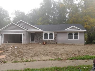Waterford Single Family Home For Sale: 7561 Turrillium Lane