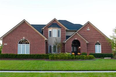 Lyon Twp Single Family Home For Sale: 52036 Copperwood Drive S