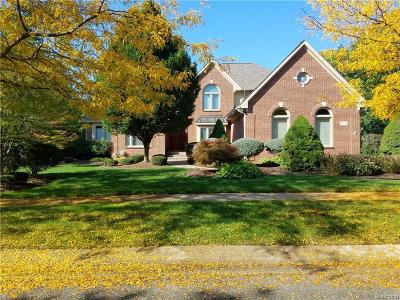 NOVI Single Family Home For Sale: 22451 Kensington