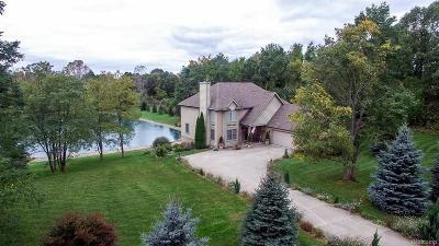 Brandon Twp Single Family Home For Sale: 2340 High Meadows Drive