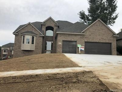 City Of The Vlg Of Clarkston, Clarkston, Independence, Independence Twp Single Family Home For Sale: 6127 Foxfire Circle