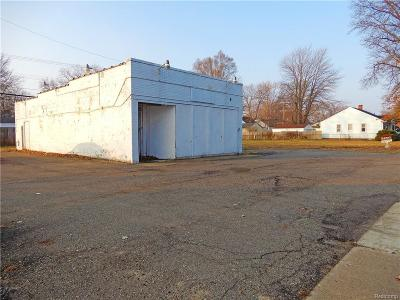 Macomb County, Oakland County, Wayne County Commercial For Sale: 34429 Annapolis St