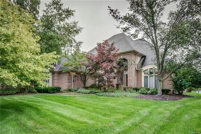 West Bloomfield Twp Single Family Home For Sale: 4899 Peggy Street