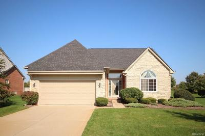 Canton Condo/Townhouse For Sale: 47596 Vistas Circle Drive N