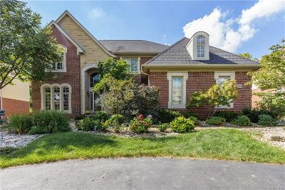 West Bloomfield, West Bloomfield Twp Single Family Home For Sale: 7354 Carlyle