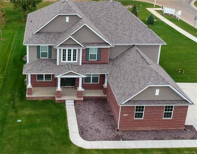 Lyon Twp MI Single Family Home For Sale: $534,900
