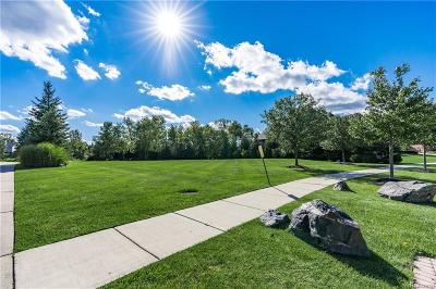 Novi Residential Lots & Land For Sale: 46115 White Pines Drive