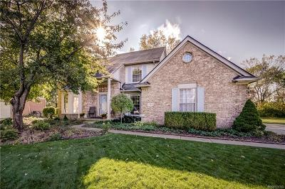Canton, Canton Twp Single Family Home For Sale: 157 Mornington Court