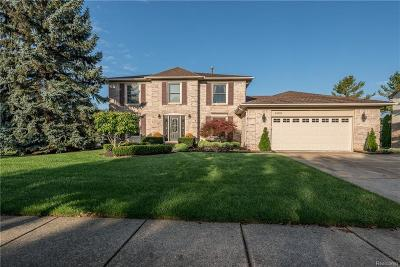 Novi Single Family Home For Sale: 24563 Picara Drive