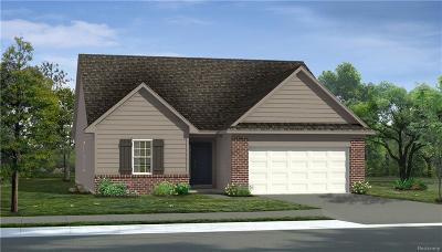 Southfield Single Family Home For Sale: 17724 Silver Maple Street