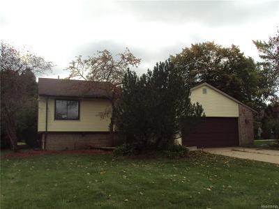West Bloomfield, West Bloomfield Twp Single Family Home For Sale: 5099 Bantry Drive