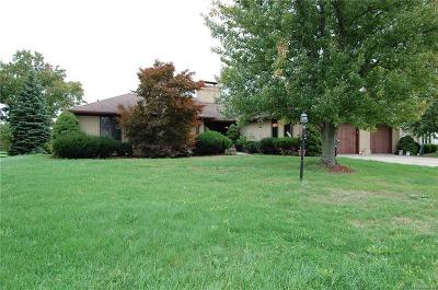 Riverview Single Family Home For Sale: 18335 Country Club Circle