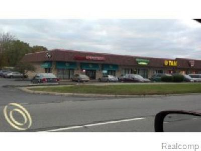 Waterford Twp Commercial For Sale: 4187 Highland Street