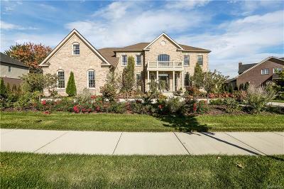 Northville Twp Single Family Home For Sale: 50500 Tamarack Trail
