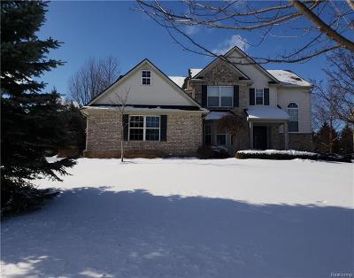 White Lake Single Family Home For Sale: 4596 S Quarry Creek Drive