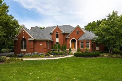 Genoa Twp MI Single Family Home For Sale: $775,000