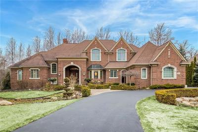 City Of The Vlg Of Clarkston, Clarkston, Independence, Independence Twp Single Family Home For Sale: 7111 Oak Ridge Court