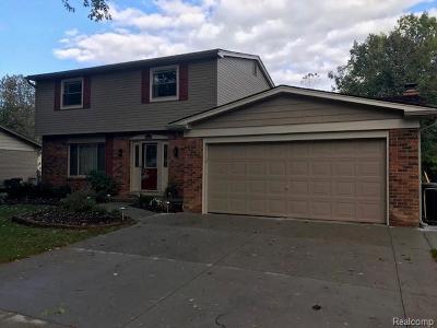 Livonia Single Family Home For Sale: 18614 Fairway Street