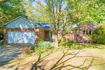 Huron Twp Single Family Home For Sale: 33972 Steadman Road