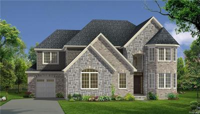 Novi Single Family Home For Sale: 43547 Bolingbrooke Lane