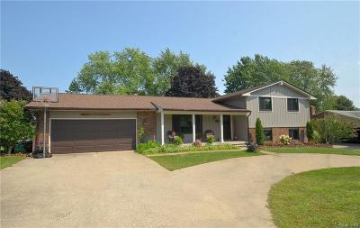 Commerce Twp Single Family Home For Sale: 3316 Tiquewood Drive