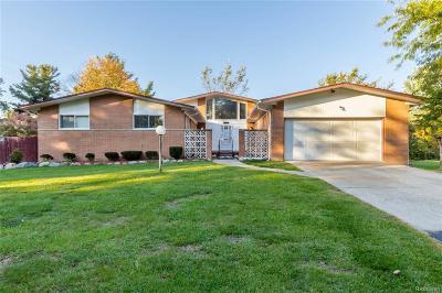 Southfield Single Family Home For Sale: 19428 Birchridge Street