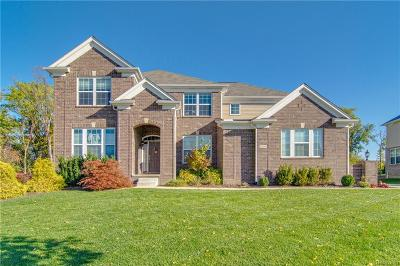 Farmington Hills Single Family Home For Sale: 22235 Lujon Drive