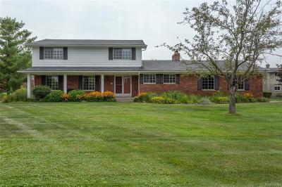 White Lake Single Family Home For Sale: 30 Lisa Cir.