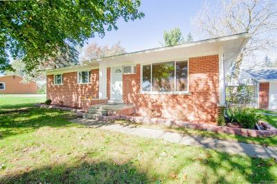 Single Family Home For Sale: 51190 Ford Road