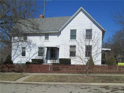 Ypsilanti Single Family Home For Sale: 601 N River Street