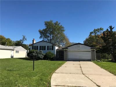 Southfield Single Family Home For Sale: 28780 Bell Road
