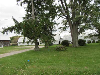 Frankenmuth Twp MI Single Family Home For Sale: $450,000