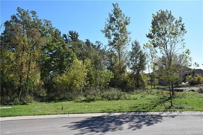 Novi Residential Lots & Land For Sale: 29930 Brush Park Court