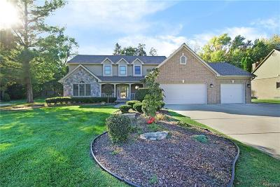 Livonia Single Family Home For Sale: 16951 Ryan Rd