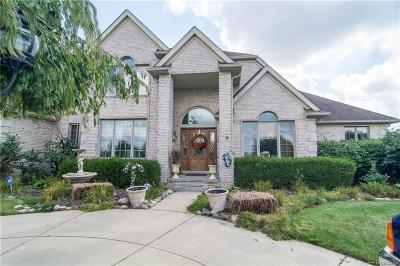 Northville Twp Single Family Home For Sale: 16672 Victoria Court