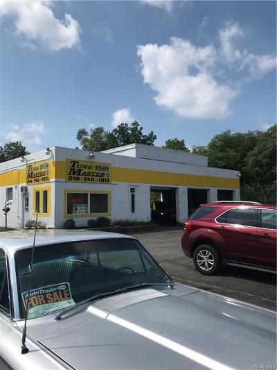Oakland County Commercial For Sale: 307 Cesar Chavez Avenue