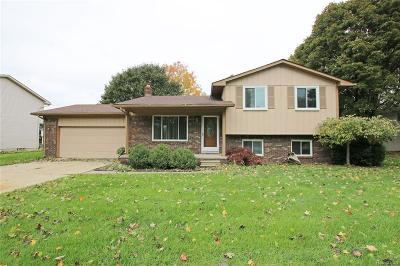 City Of The Vlg Of Clarkston, Clarkston, Independence, Independence Twp Single Family Home For Sale: 7149 Chapel View Drive