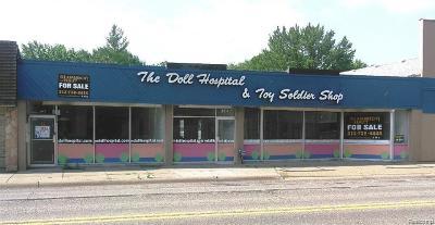 Berkley Commercial For Sale: 3947 12 Mile Road