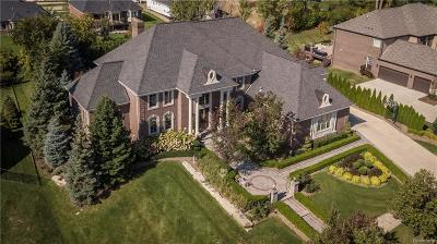 Macomb County, Oakland County, Wayne County Single Family Home For Sale: 18817 Grande Vista Drive