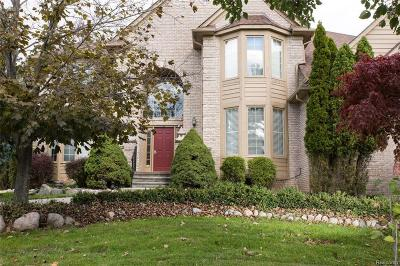 Rochester, Rochester Hills Single Family Home For Sale: 3566 Heron Ridge Drive