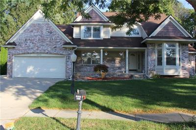 NOVI Single Family Home For Sale: 20732 Hannah Court