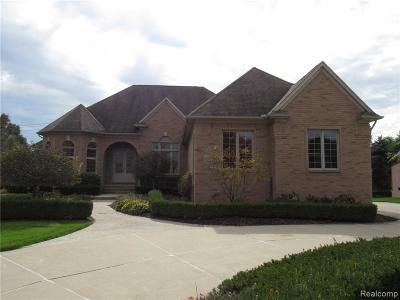 Washington Twp MI Single Family Home For Sale: $549,900