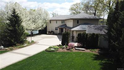 Rochester, Rochester Hills, Oakland Twp, Lake Orion Vlg, Clarkston, Orion Twp, Ortonville, Ortonville Vlg, Brandon Twp, Independence Twp Single Family Home For Sale: 8789 Lakeview Boulevard