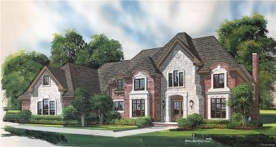 NOVI Single Family Home For Sale: 48810 Castello Court
