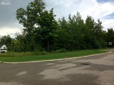 Grand Blanc MI Residential Lots & Land For Sale: $35,000