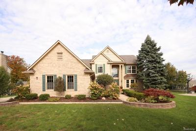 Canton, Canton Twp Single Family Home For Sale: 41582 Singh Drive