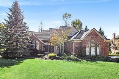 Shelby Twp Single Family Home For Sale: 3560 Torrington Court