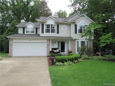 Independence Twp MI Single Family Home For Sale: $349,900